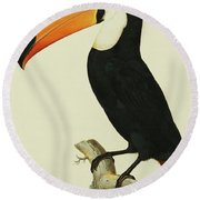 The Toco Toco Toucan  Ramphastos Toco Round Beach Towel