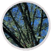 The Top A Glowing Tree Round Beach Towel