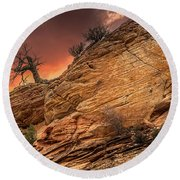 The Tree Of Zion Round Beach Towel