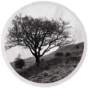 The Tree On The Fell Round Beach Towel