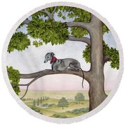 The Tree Whippet Round Beach Towel