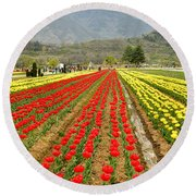The Valley Blooms Round Beach Towel