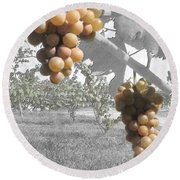 The Vineyard 2  Round Beach Towel
