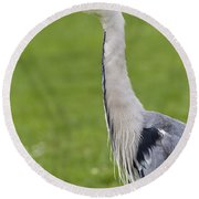 The Watchful Heron Round Beach Towel