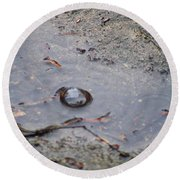 The Water Bubble Round Beach Towel