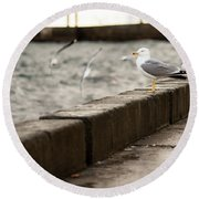 The White Bird Round Beach Towel