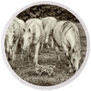 The Wild Horses Of Shannon County Mo 7r2_dsc1111_16-09-23 Round Beach Towel