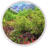 The Wildflowers Of Lundy Canyon Round Beach Towel