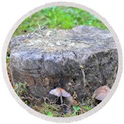 There Is A Fungus Among Us Round Beach Towel
