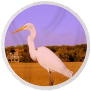 This Is My Good Side Round Beach Towel