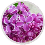 This Lilac Has Flowers With A White Edging. 4  Round Beach Towel