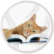 This Tabby Cat Loves Books  Round Beach Towel