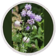 Thistle Flower Round Beach Towel