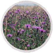 Thistle Storm  Round Beach Towel
