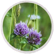 Clover And Daisies Round Beach Towel