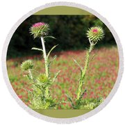 Thistles In A Field Of Clover Round Beach Towel
