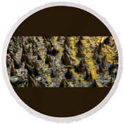 Thorns Of Silk Round Beach Towel