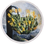 Thornton: Aloe Round Beach Towel