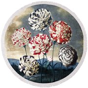 Thornton: Carnations Round Beach Towel