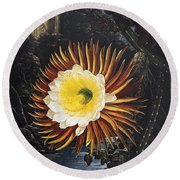 Thornton: Cereus Round Beach Towel