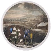 Thornton: Crocusi Round Beach Towel