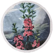 Thornton: Kalmia Round Beach Towel