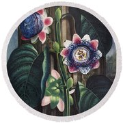 Thornton: Passion-flower Round Beach Towel