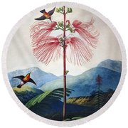 Thornton: Sensitive Plant Round Beach Towel