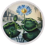 Thornton: Water Lily Round Beach Towel