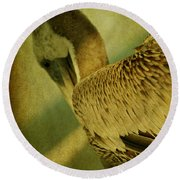 Thoughtful Pelican Round Beach Towel