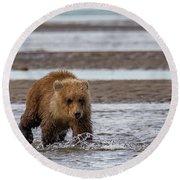 Three Bears Round Beach Towel