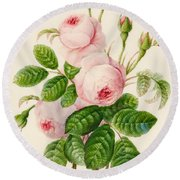 Three Centifolia Roses With Buds Round Beach Towel