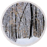 Three Creeks Conservation Area - Winter Round Beach Towel