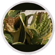 Three Different Differential Grasshoppers     July      Indiana Round Beach Towel