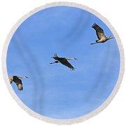 Three Flying Sandhill Cranes Round Beach Towel