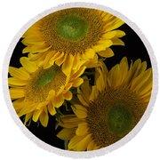 Three Golden Sunflowers Round Beach Towel