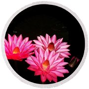 Three Night Lilies  Round Beach Towel