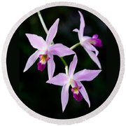 Three Orchids Round Beach Towel
