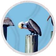 Three Pelicans Round Beach Towel