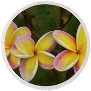 Three Pink And Yellow Plumeria Flowers - Hawaii Round Beach Towel