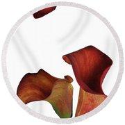 Three Rust Calla Lilies Round Beach Towel