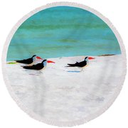 Three Skimmers Round Beach Towel
