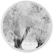Three Snow Frosted Trees In Black And White Round Beach Towel