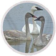 Three Swans Swimming Round Beach Towel