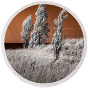 Three Trees  In Infrared On Top Of A Grassy Dune Round Beach Towel
