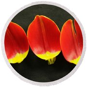 Three Tulip Petals Round Beach Towel