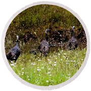 Three Turkeys Round Beach Towel