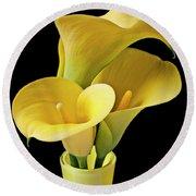 Three Yellow Calla Lilies Round Beach Towel