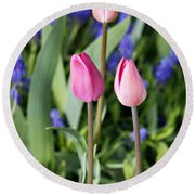 Three Young Tulips Round Beach Towel