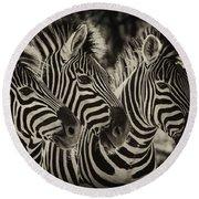 Three Zebra Round Beach Towel